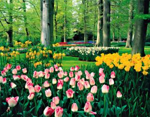 03_Zahrady 420