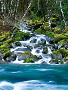 04_impresie vody 340