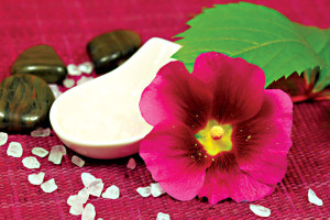 Beauty treatment with mallow