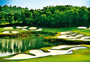 06_Golf 485