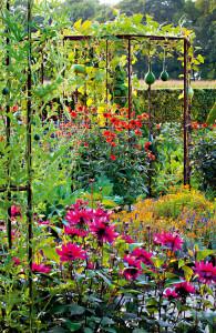 07_Zahrady 420