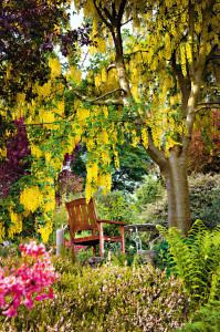 08_Zahrady 420