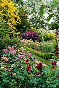 09_Zahrady 420