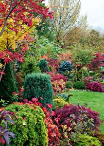 10_Zahrady 420